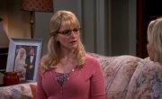 ������ �������� ������ / The Big Bang Theory - 9 �����, 6 �����