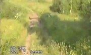 Кочевка пасеки на севера 1999 год, 1 часть