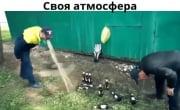 Пейте пиво пенное...