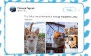 Финляндия обвинила российских котов в пропаганде (Руслан Осташко. Итоги Года)