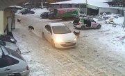 Жительница Самары специально раздавила собаку, вставшую перед её автомобилем