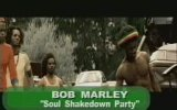 Bob Marley - Soul Shakedown Party