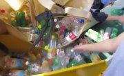 Минприроды решило покончить с либерализмом в переработке отходов (Руслан Осташко)