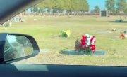 Датчики Tesla показали на кладбище человека, хотя вокруг никого.