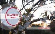 Погода в Красноярском крае на 28.04.2021