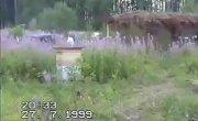 Кочевка пасеки на севера 1999 год, 2 часть
