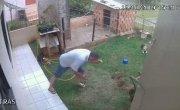 как избавиться от муровьев