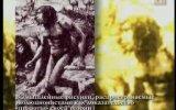 Мифы о эволюции, которые так долго внушали миру. Часть 2/3