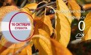 Погода в Красноярском крае на 16.10.2021