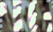 Семь поколений рок-н-ролла (7 ages of rock) - фильм №2 Расскаленные добела: Арт рок