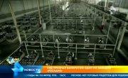 Нарастающая стабильность. Завод Лиотех ( от Роснано) банкрот.
