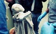 В Перу,на плато Наска_ обнаружили мумию-гуманоида