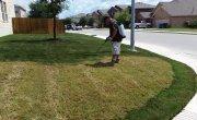 Красим траву