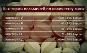 "Программа ""Актуально"" на 8 канале № 1175 ""О вкусах не спорят, а на качестве не экономят"""