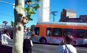 Прорыв трубы в Лос-Анжелесе