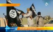 США заподозрили Toyota в связях с ИГИЛ