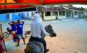 Ограбление магазина с использованием лошади без седла