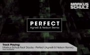 Markus Schulz  - Perfect (Trance)
