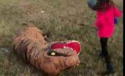 Детки отпиздили динозавра