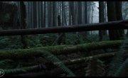 Antlers / Оленьи рога — Русский трейлер (2021)