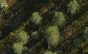 Дикая Скандинавия / Wild Nordic - 5 серия