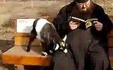 Священник и козлёнок
