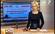 Новости 24. Седьмой канал. Эфир от 19.11.2014 19:30