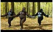 Лезгинка лесных народов