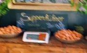 Покупка  свежих  баварских яиц