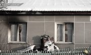 """Программа """"Спецрепортаж"""", выпуск №207 """"СКОЛЬКО ЕЩЁ НУЖНО ЖЕРТВ?"""""""